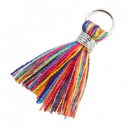 Kwastjes 1.8cm Zilver-Multi colour red blue