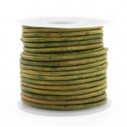 DQ Leer rond 2 mm Vintage moss green